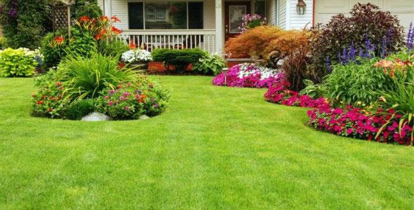 lawn-garden-Medium